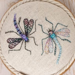 Mystical Dragonflies and Interesting Insects workshop with Lorna Bateman